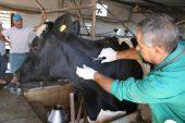 Hayvan Hastalıkları İle Mücadele ve Hayvan Hareketleri Kontrolü Genelgesi (2016-02)